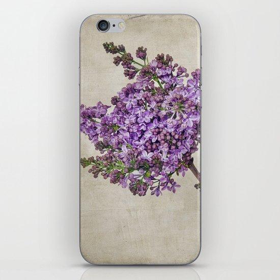 Lilacs iPhone & iPod Skin