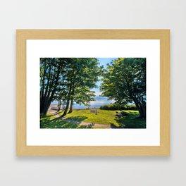 Summertime Park Framed Art Print