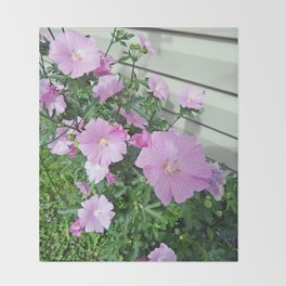 Pink Musk Mallow Bush in Bloom Throw Blanket