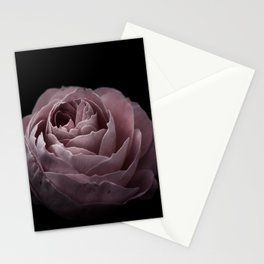 Autumn Rose III Stationery Cards
