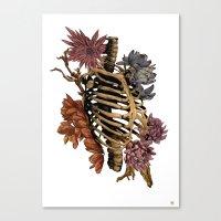 bones Canvas Prints featuring Bones by Zé Pereira Illustration