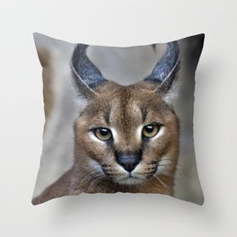 Caracal Throw Pillow