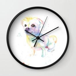 Milo (The Chihuahua Shitzu) Wall Clock