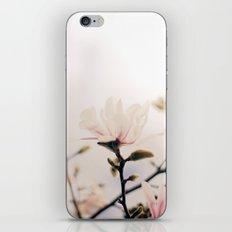 Magnolia iPhone & iPod Skin