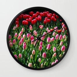 tulip galore! Wall Clock