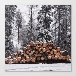 Winter No.2 Canvas Print