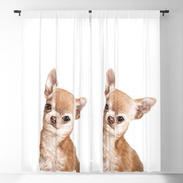 Chihuahua Blackout Curtain