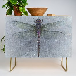 Dragonfly on blue stone and metal background Credenza
