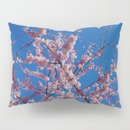 Cherry Awesomes Pillow Sham