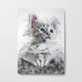Cat Animal Metal Print