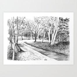 Black Park pathway Art Print