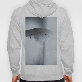Ethereal Beauty Hoody
