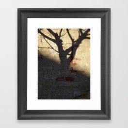 006 Framed Art Print