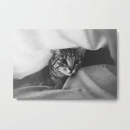 hunting cat black & white Metal Print