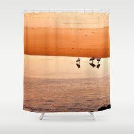 Seagull Huddle Shower Curtain