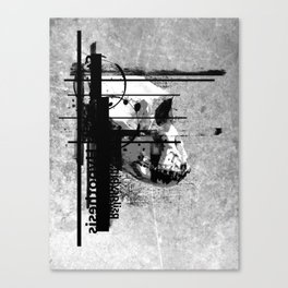 Evolution of Cognition Canvas Print