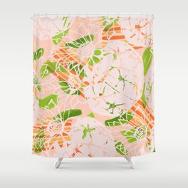 Soft summer Astrophytum asterias Shower Curtain