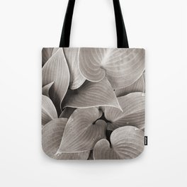 Hosta Plant Tote Bag