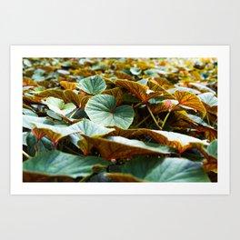 flora in Brooklyn Art Print