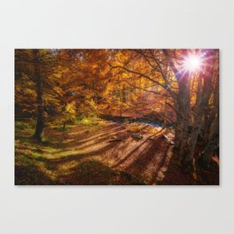 The Golden Autumn Campground (Color) Canvas Print