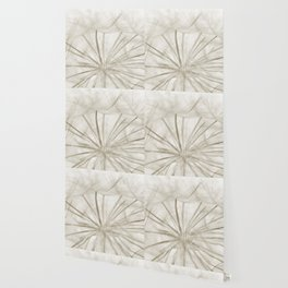 Dandelion Neutral Closeup Wallpaper