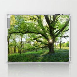 To Swing On The Tree Of Hope Laptop & iPad Skin