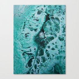 ice age flow Canvas Print