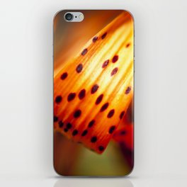 Vibrant Color iPhone Skin
