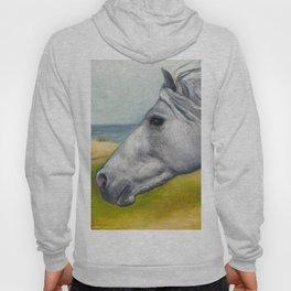 Horse Profiles 1 Hoody