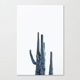 Indigo Desert Cactus Canvas Print