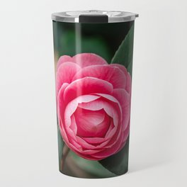 Pink Perfection Camellia Japonica Blooms in Spring Travel Mug