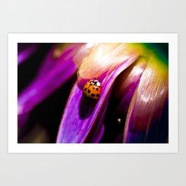 Lady Bug on Flower Art Print