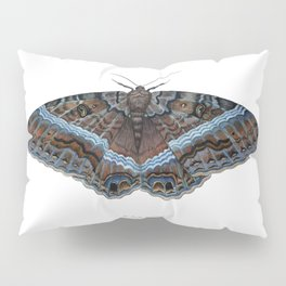 Black Witch Moth Pillow Sham