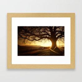 Treehugger Framed Art Print