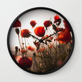 Red Poppies In Field In Morning Light Remembrance day Wall Clock