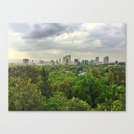 Viva Mexico City Canvas Print