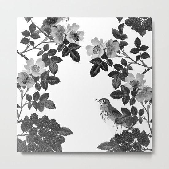 Birds and the Bees Black and White Metal Print