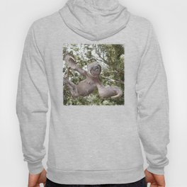 Sloth, A Real Tree Hugger Hoody