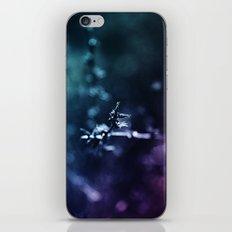 Quartz iPhone & iPod Skin