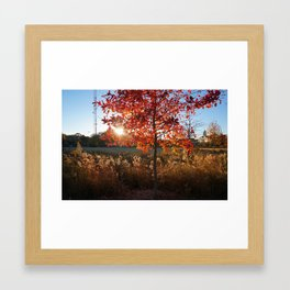 BeltLine Framed Art Print