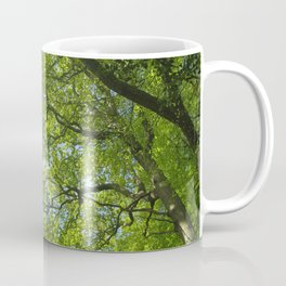 New Forest Beech Canopy Coffee Mug
