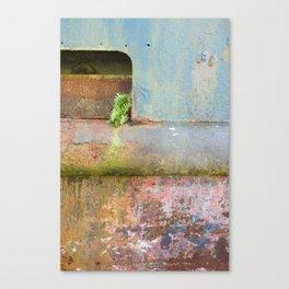 Stowaway Canvas Print