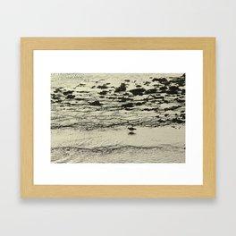 Curlew Wader Bird Rocky Seashore Framed Art Print