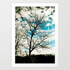 Bare Tree & Clouds Art Print