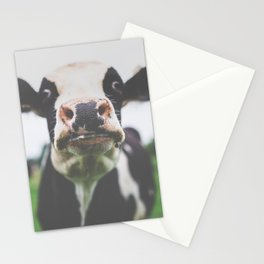 Funny Cow Photography print Stationery Cards