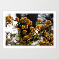 French Flowers Art Print