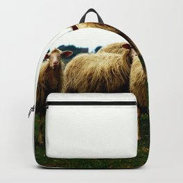 Sheep on a Grassy Hill Backpack