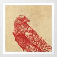 raven Art Prints featuring Red Raven  by Terry Fan