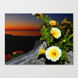 Evening Rhapsody Canvas Print