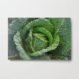 Nature's Fold Metal Print